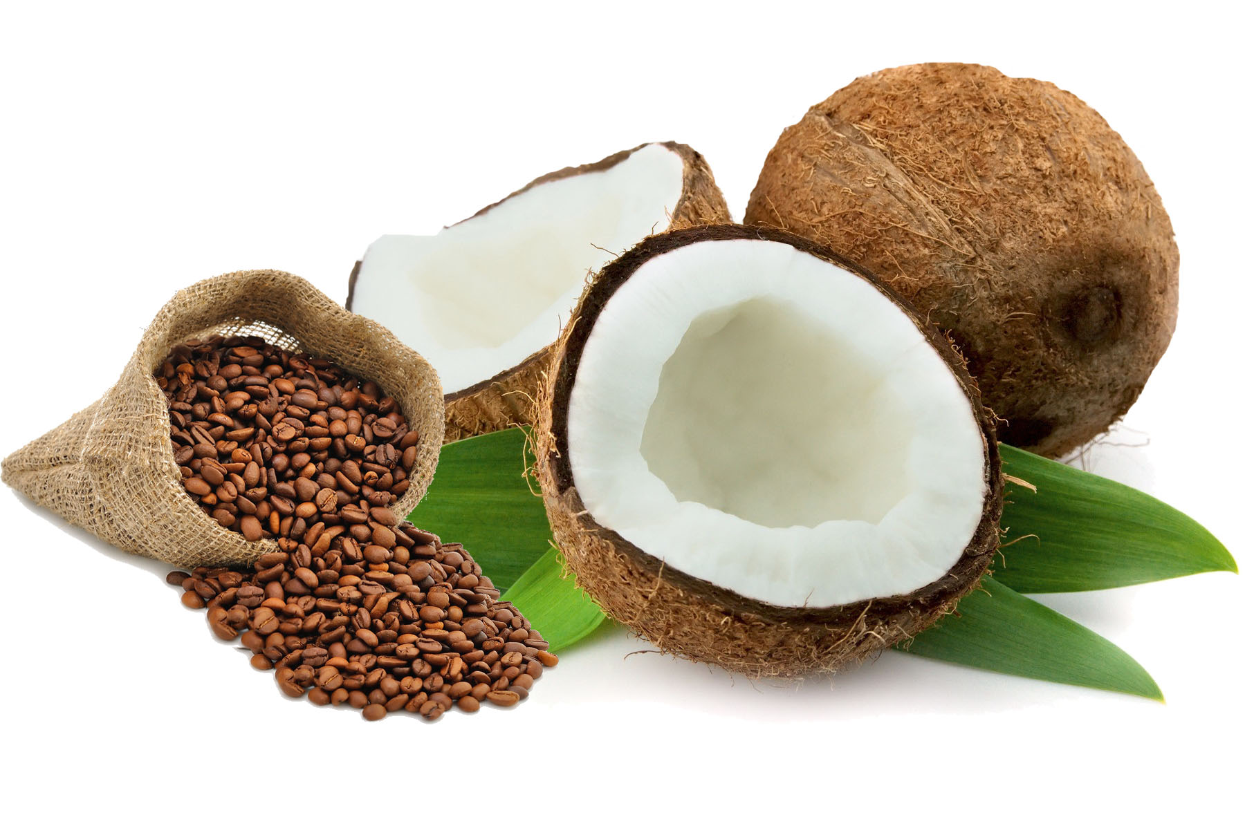 Coconut-Cream.jpg
