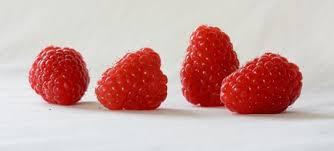 Raspberries (1).jpg