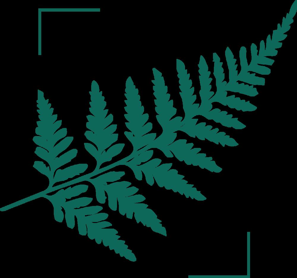 Padvinderij-Logo-beelmerk.png