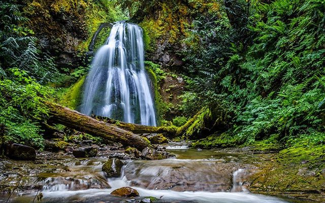 Spirit falls.  #earthpix #wildernessculture #pct #pacificnw #traveloregon #cascadiaexplored #waterfall #natgeography #earthfocus #nakedplanet #ourplanetdaily #globeshotz