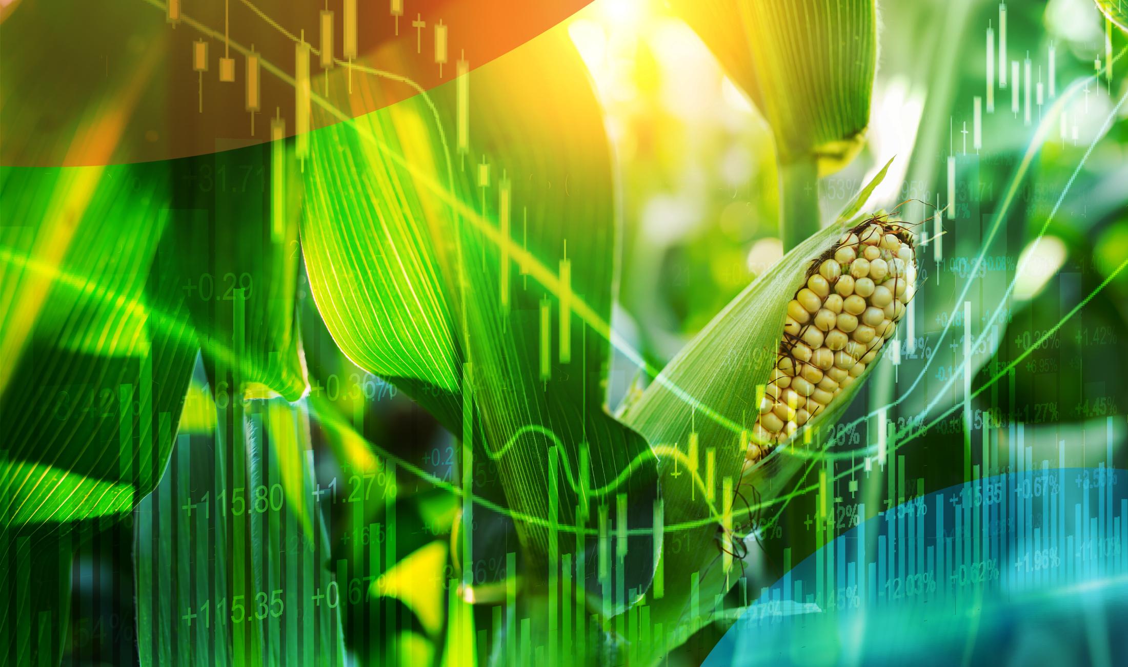 Harvestone-Banner-Ethanol-Market.jpg