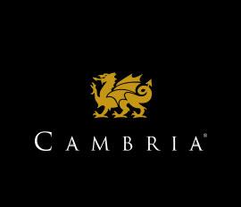 Cambria-Apuzzo Kitchens