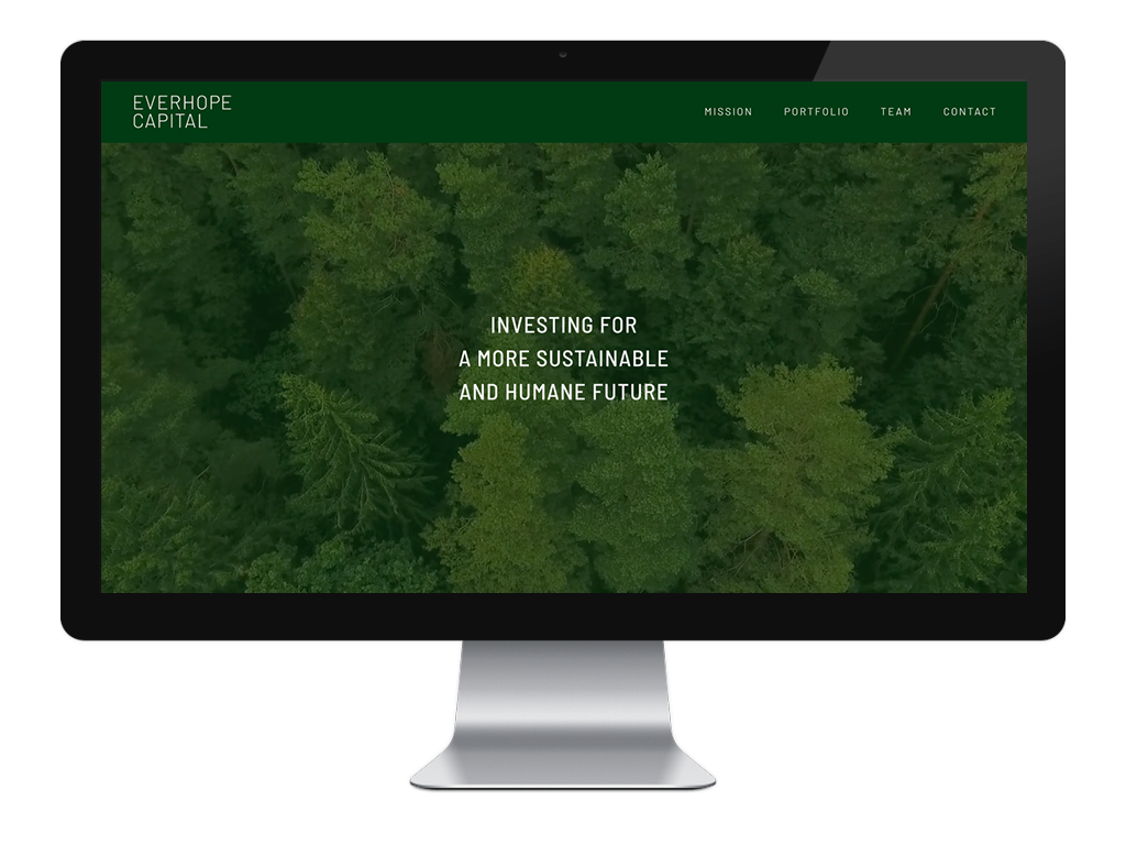 EverHope for Portfolio – Website in Skin – Desktop Image.png