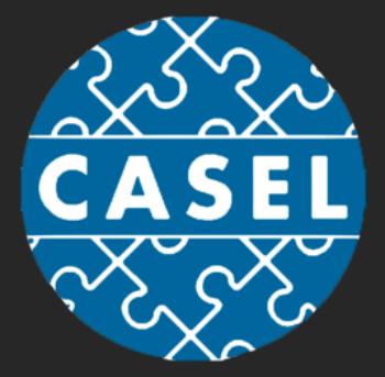 big casel.png