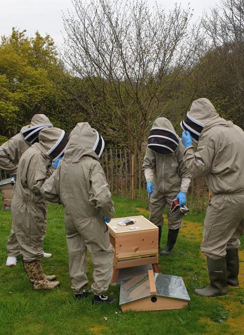 NI Assembly staff inspecting a hive with the Beekeeper