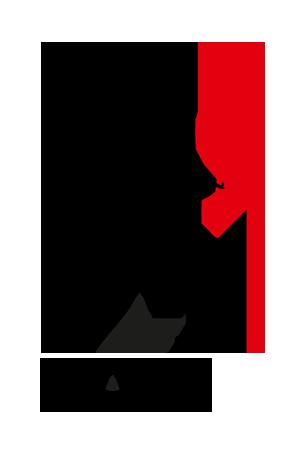 ICAEW+logo.png