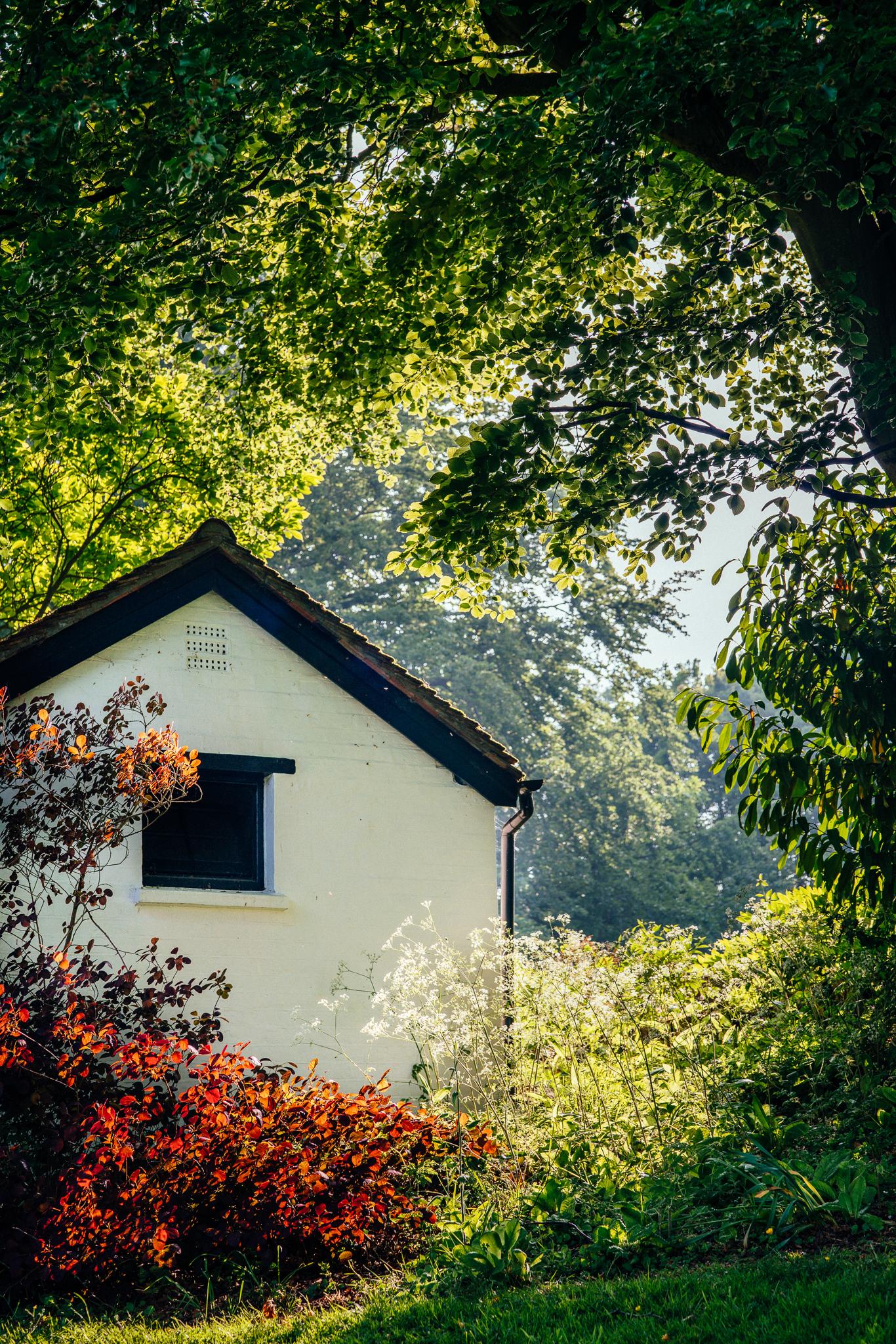 treehouse (3 of 35).jpg