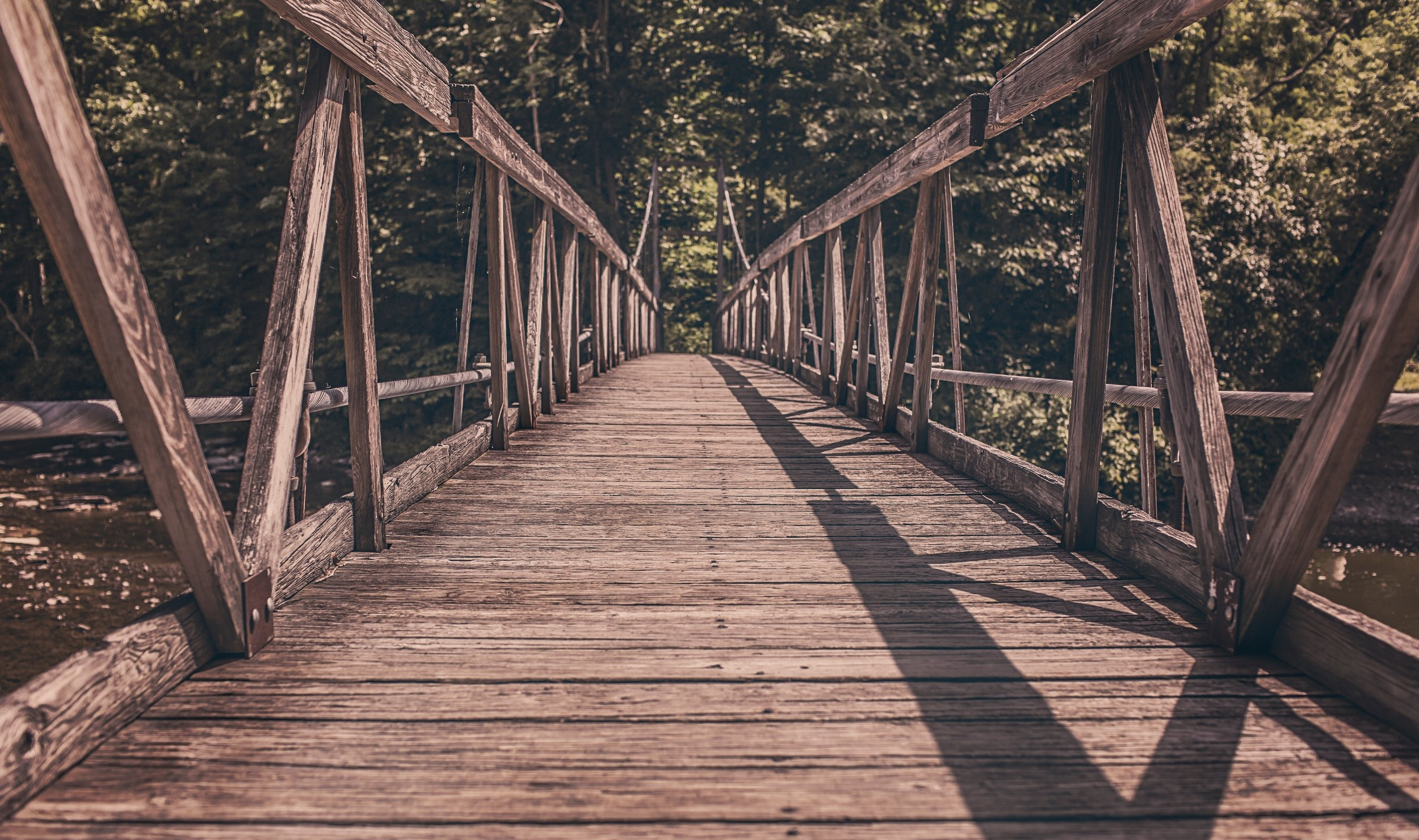 bridge-footbridge-path-2257.jpg