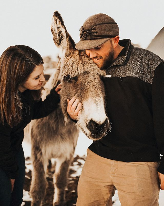 Cass + Maggie live the simple life... in a cabin that they built surrounded by all sorts of animals! On the blog today! Photo by @whitebuffalophotography #buckskinbride #sheepherders #sheepdog #engaged