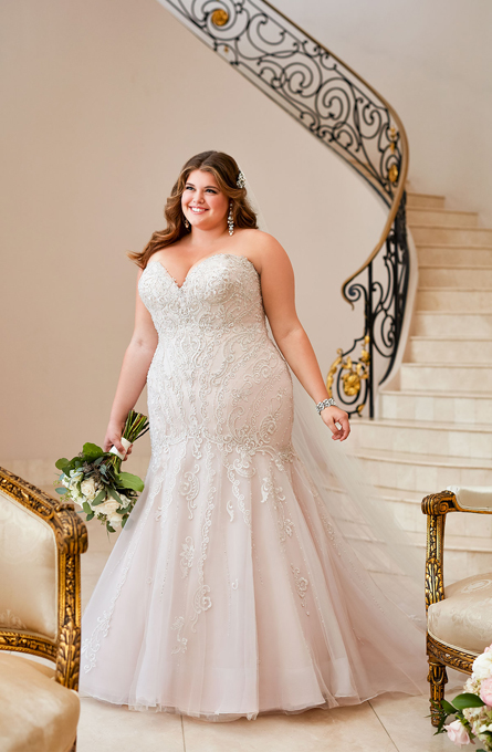 STELLA YORK PLUS SIZE