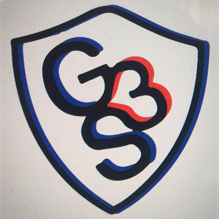 g3s logo123.jpg