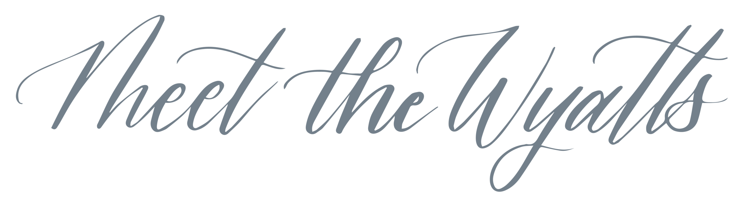 website-headers-meet-the-wyatts-01.png