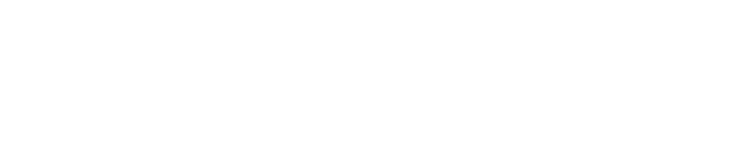 In_Logo_W.png
