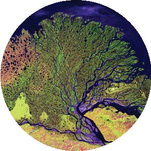 NASA Space Apps Challenge_Banner_Ecological Neighborhood_circle.png
