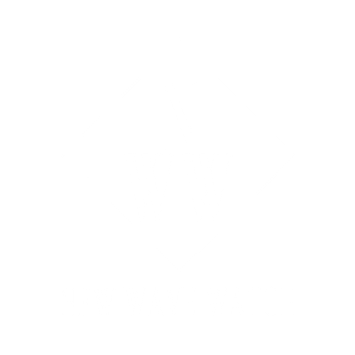 New Wave logo (4).png
