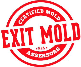 exit-mold-red.jpg