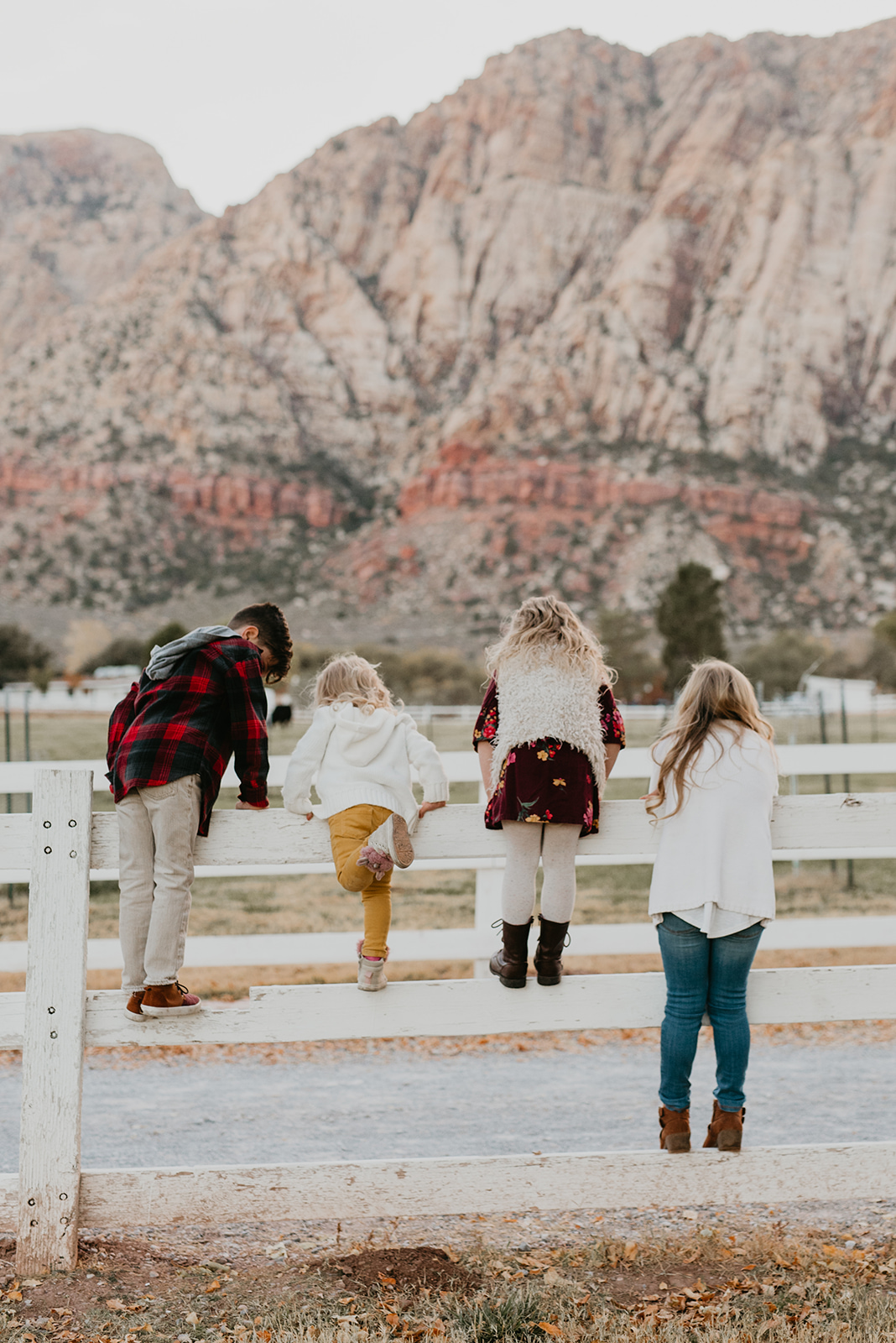 Fitzgerald Family at Spring Mountain Ranch