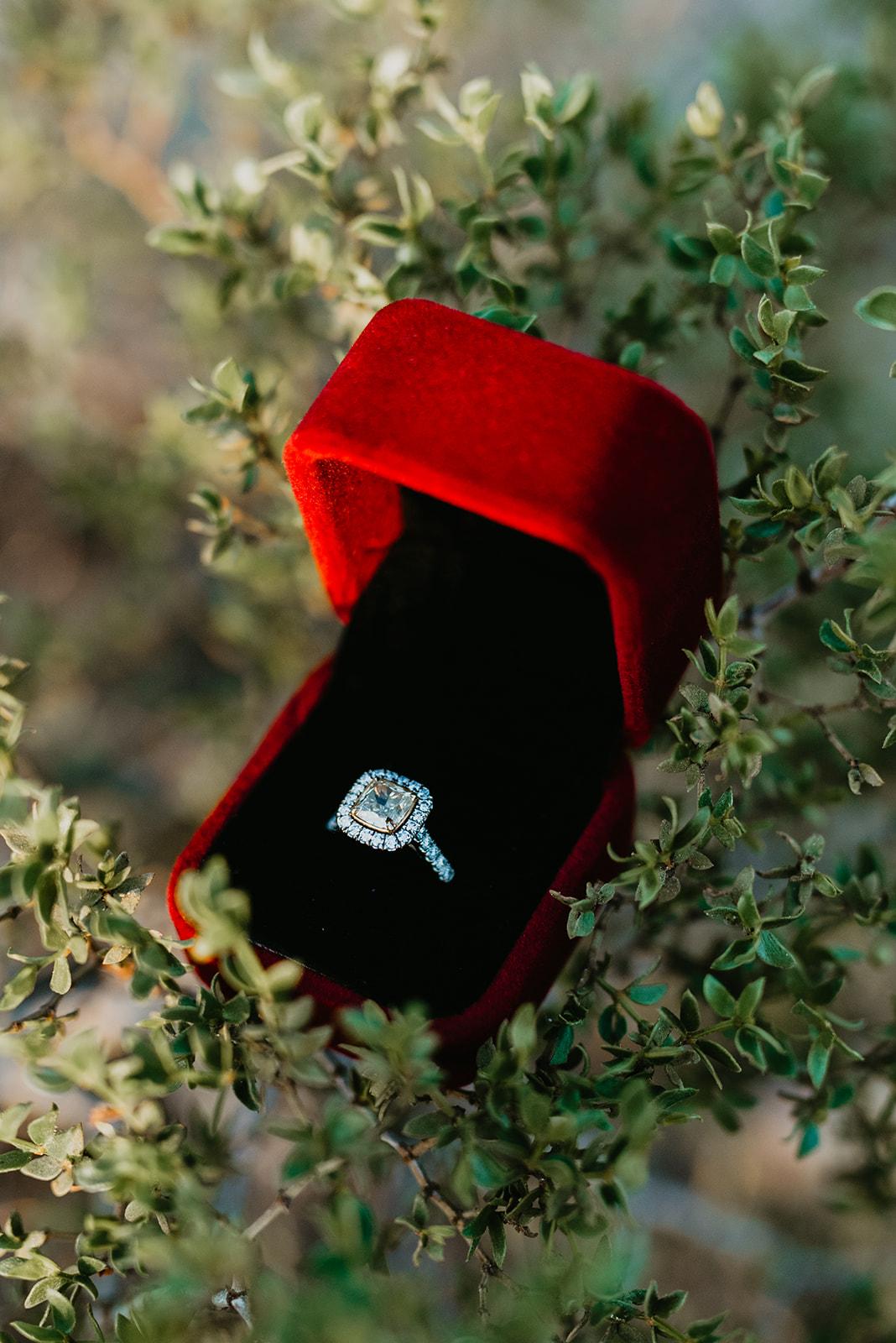 Engagement Shoot In Las Vegas Desert - Engagement Ring