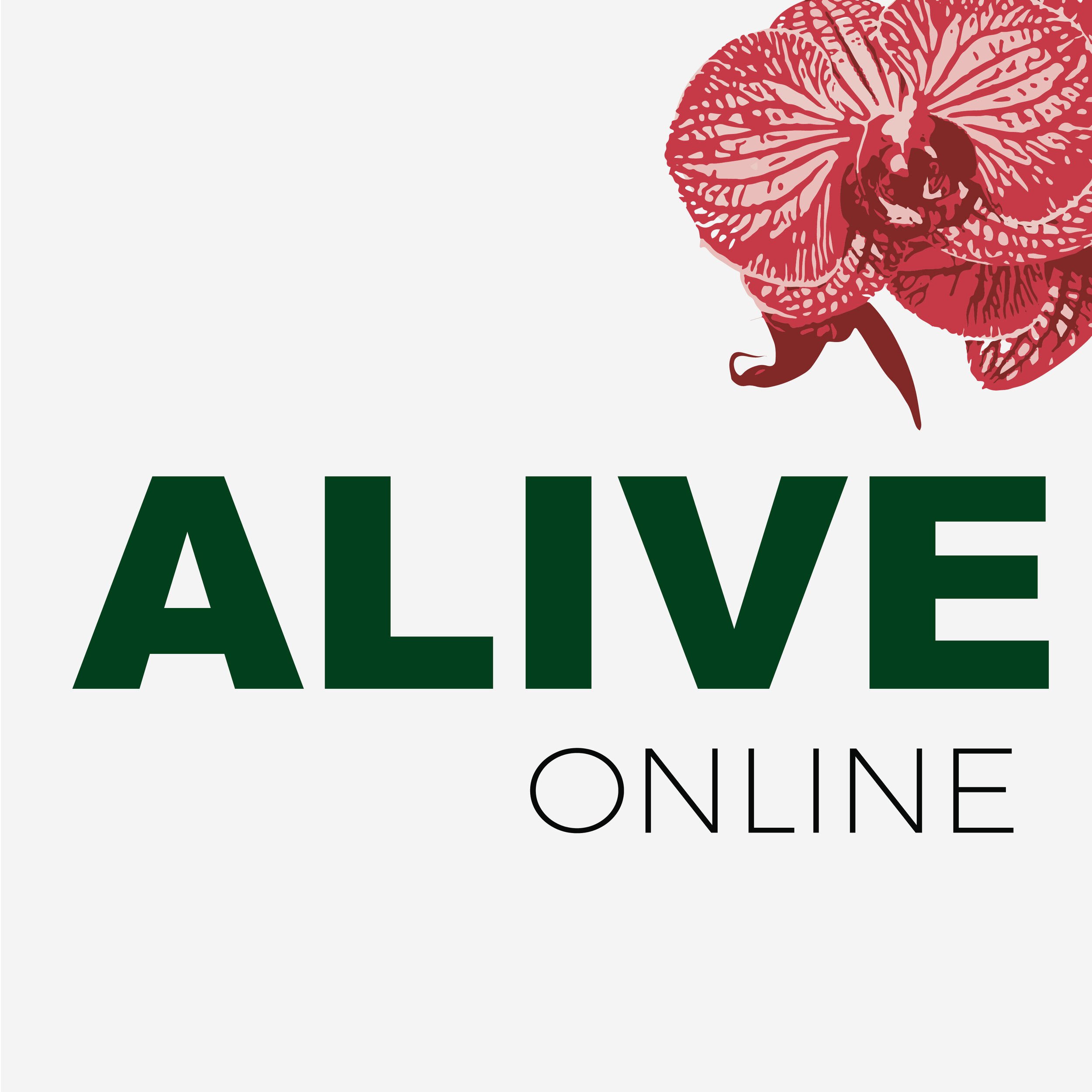 ALIVE ONLINE Workshop GraphicsArtboard 15@3x-100.jpg