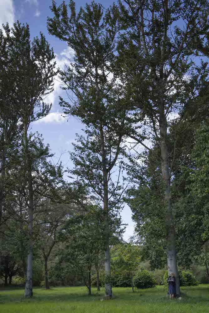 Lesley-at-the-Yorkshire-Arboretum-1.jpg