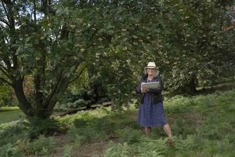 Lesley-sketching-at-the-Yorkshire-Arboretum.jpg