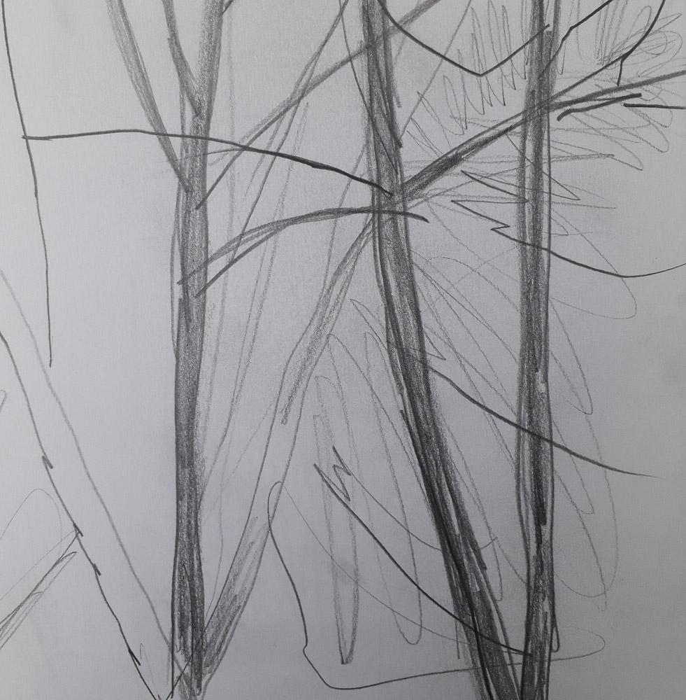 sketchbook-arboretum-ideas-4.jpg