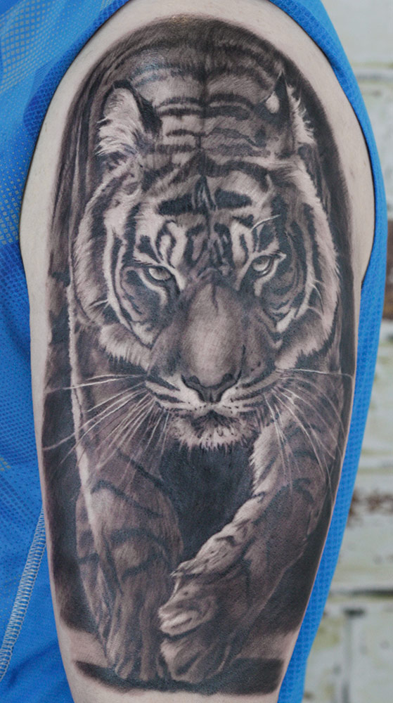 Tiger tattoo here was done as a first tattoo. Fair play to you my friend. And that is just a beginning!