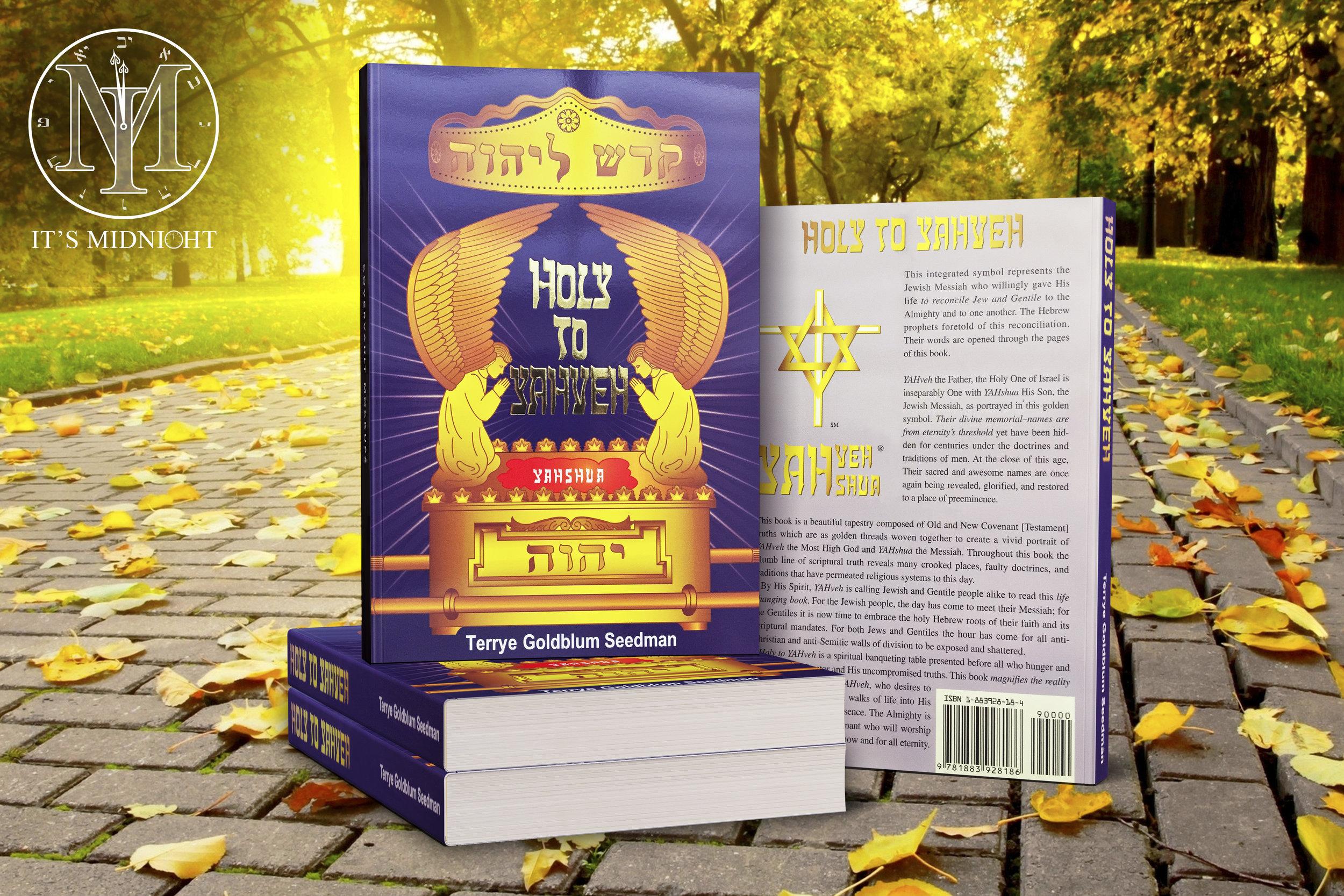 Holy to Yahveh Thumbnail Paperback - Terrye Goldblum Seedman.jpg