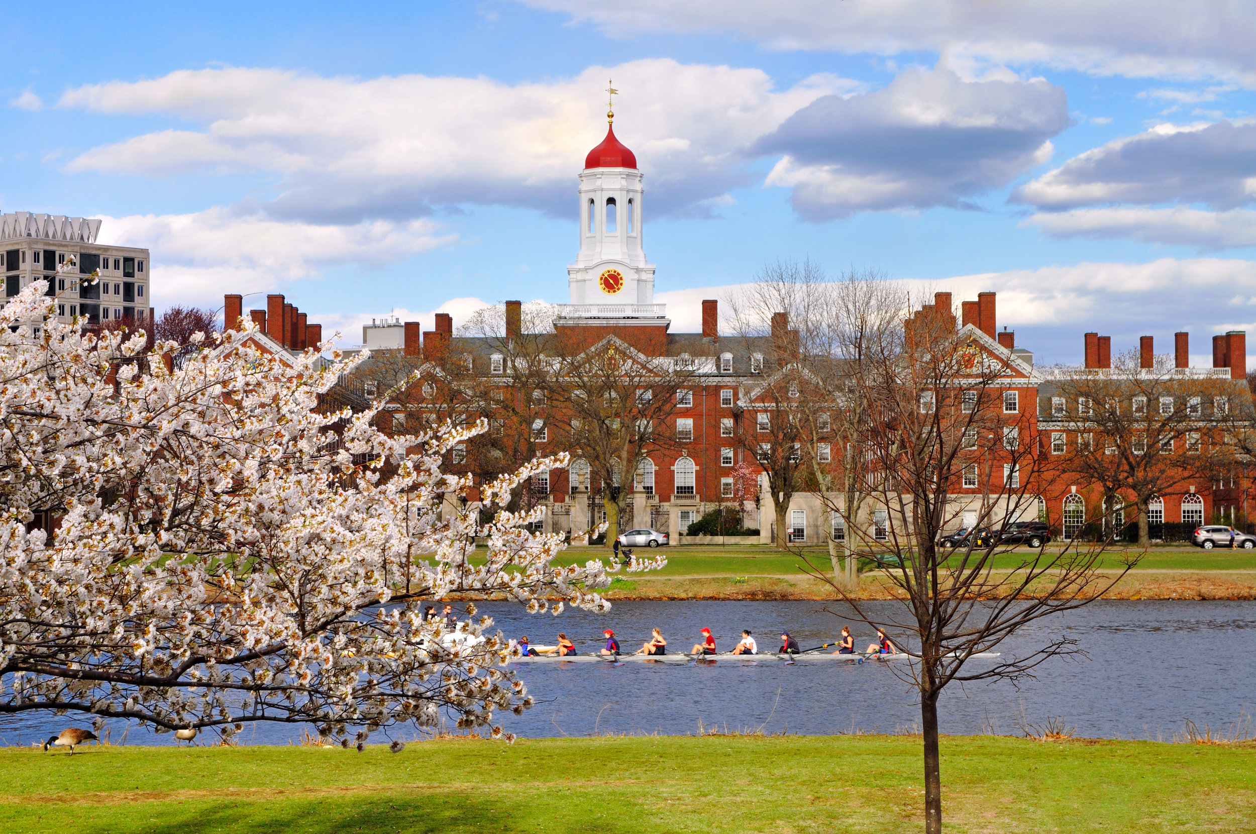 Harvard Business School 2.jpg