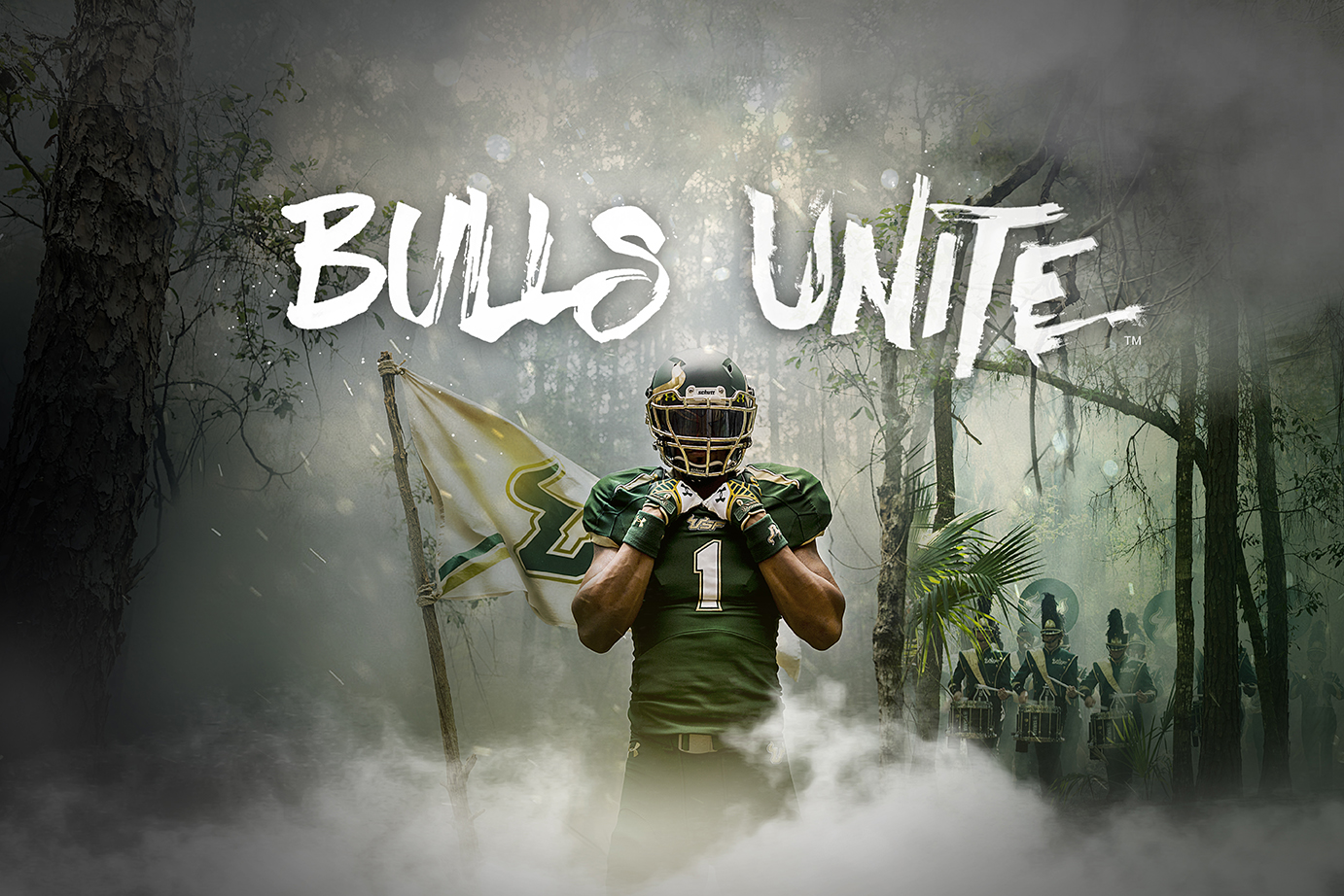 USF Football_Horizontal 4_Web.jpg