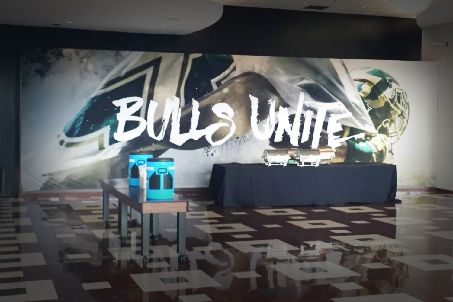 BullsUnite_Stadium1.jpg