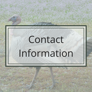 Contact CASL