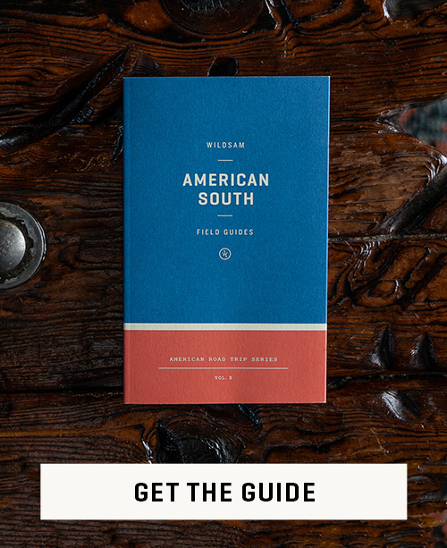 American_South-Get_the_Guide.jpg