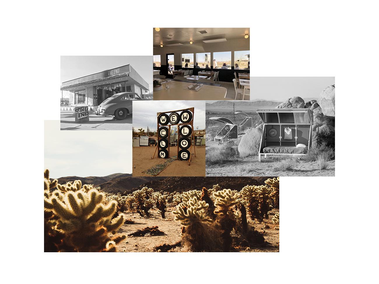 Desert_Southwest-Joshua_Tree-Header.png