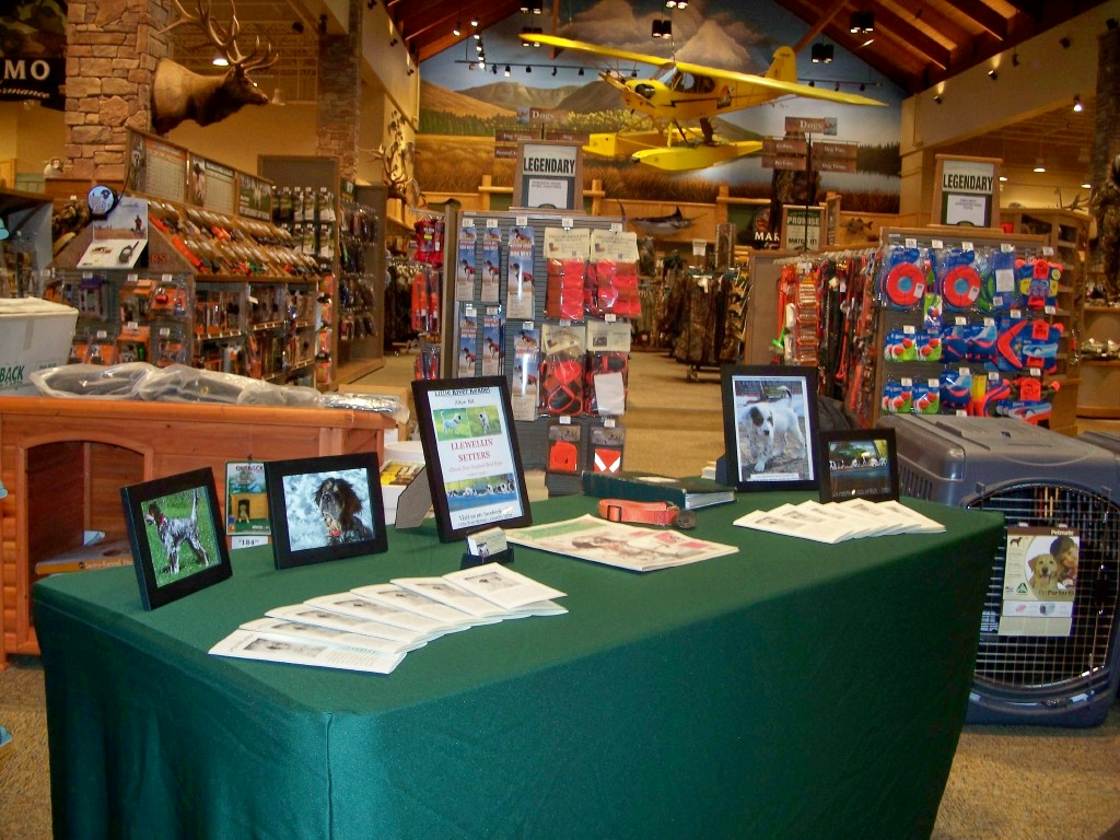 cabelas maine —dog days of summer