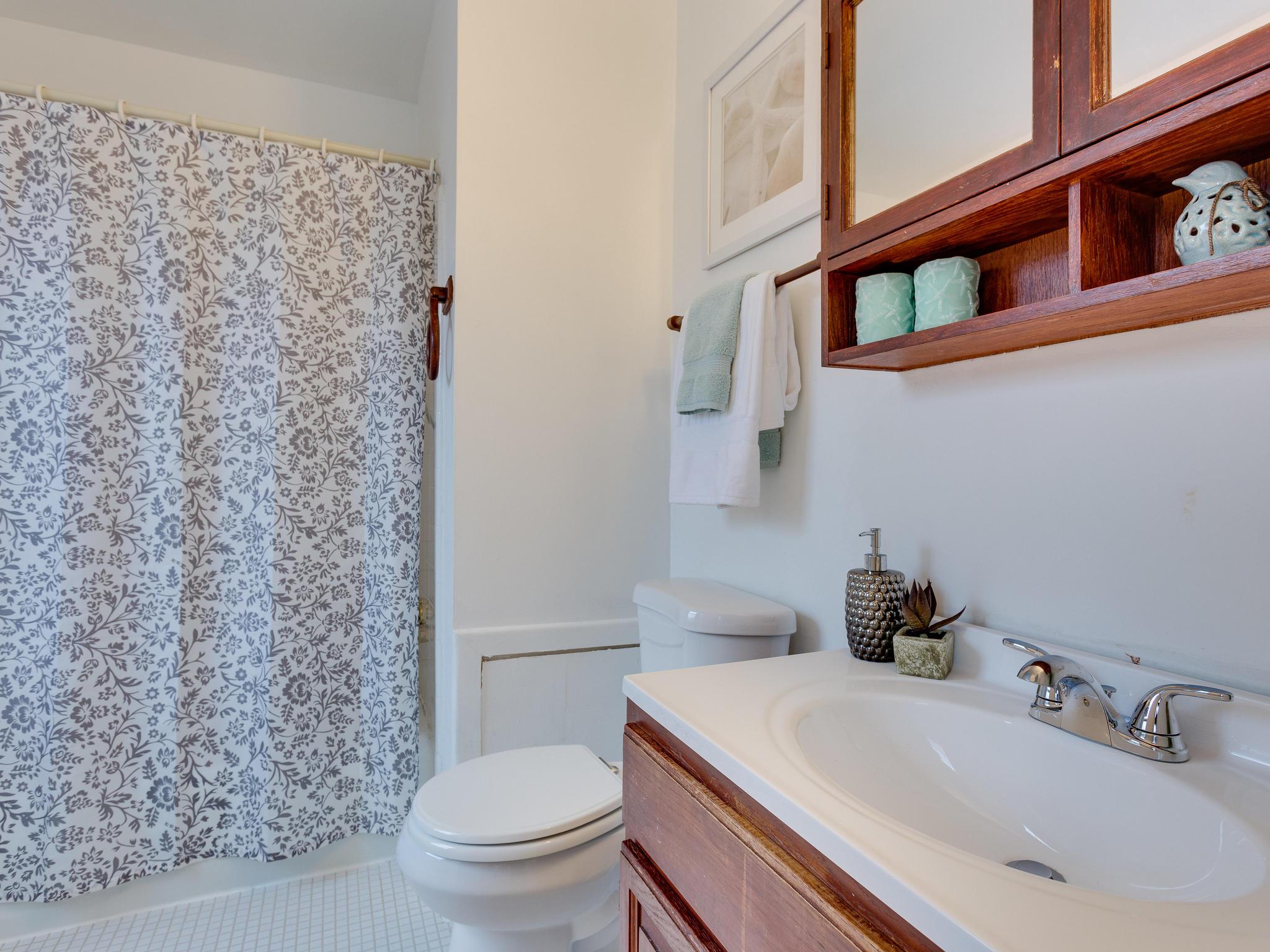 5523 Miles Ct Springfield VA-MLS_Size-031-22-Master Bath-2048x1536-72dpi.jpg