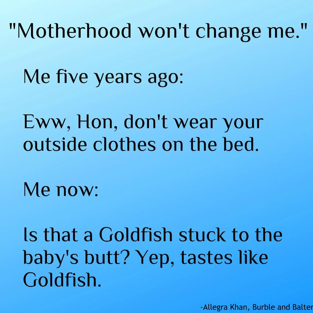 Mom-Standards-Goldfish-Meme-Burble-and-Balter.jpg