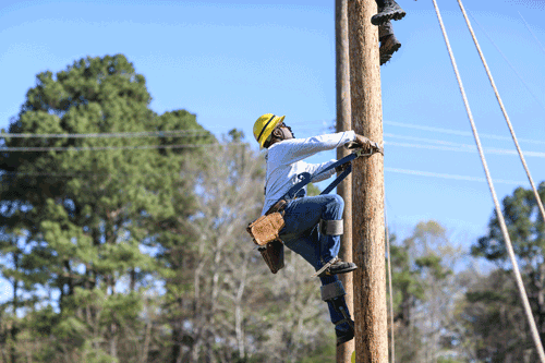 Utility Co-ops -