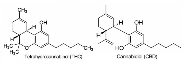 THC-CBD.jpg