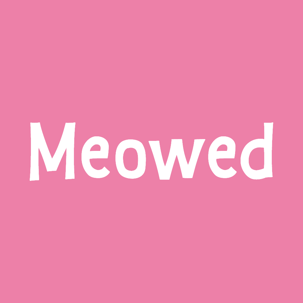 Meowed - Best cat community on instagram