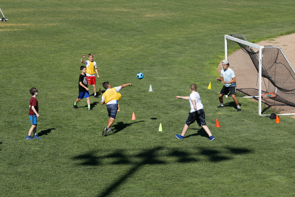 Expansive grass fields for multisport