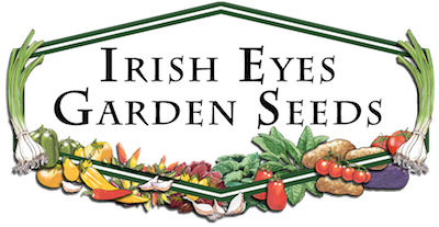 irish-eyes-logo.png