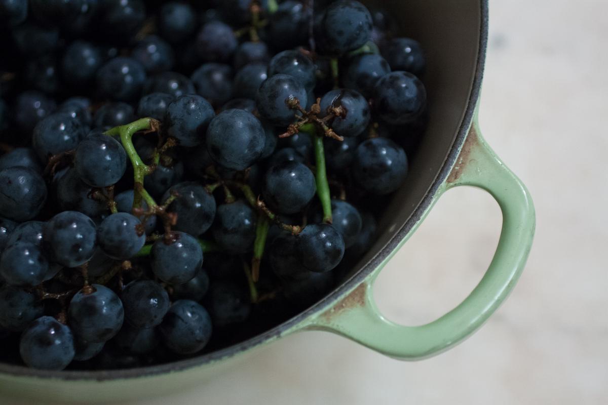 grapes-2.jpeg