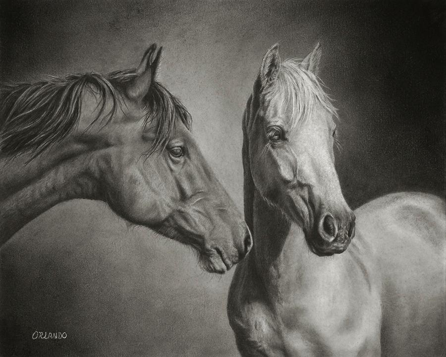Orlando- Two Horse 8x10 copy.jpg