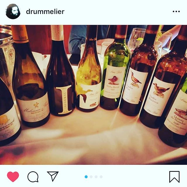 Repost from @luispatowines and @luisaplourenco seminar on indigenous Portuguese grapes #encruzado #malvasiafina and #Baga @drummelier #wineeducation #drinkmoreportuguesewine