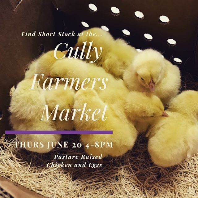 Stop by the Cully Farmers Market Thursday and buy some of the cleanest and most honest meat around! . . . #honestmeat #pastureraised #chicken #eggs🍳 #farmersmarkets #hustleandgrind #dontmissthis #whilesupplieslast