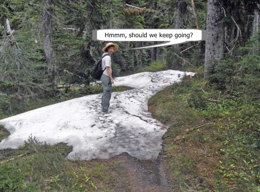 trail+covered+in+snow.jpg