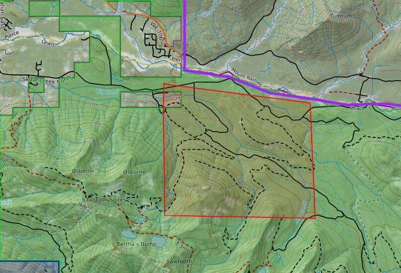 USFS camping near Mt Rainier.jpg