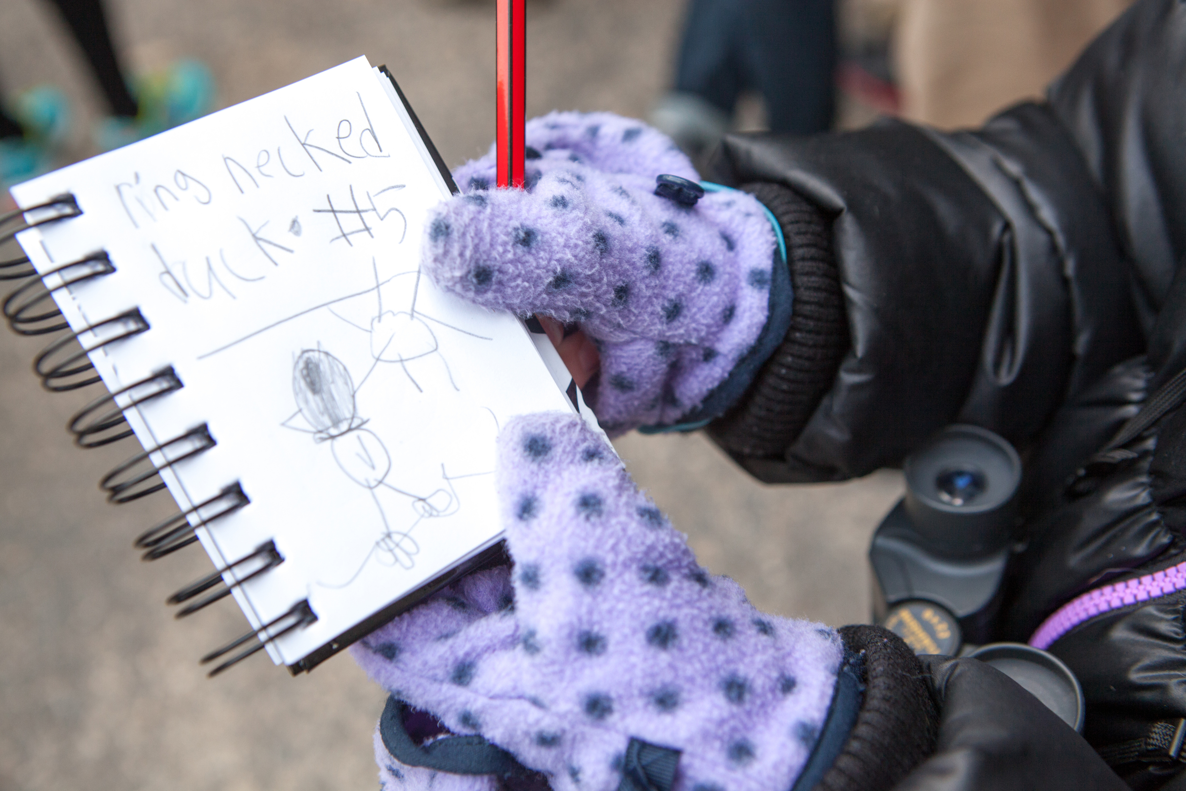 Parents brought their kids to the NYC CBC. Photo: Camilla Cerea/Audubon/NYC Christmas Bird Count