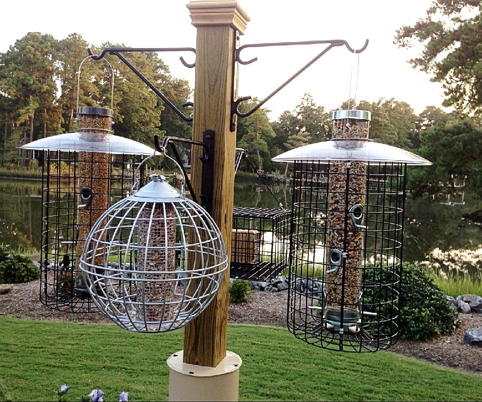 Feeder-in-feeder allows small bird access.